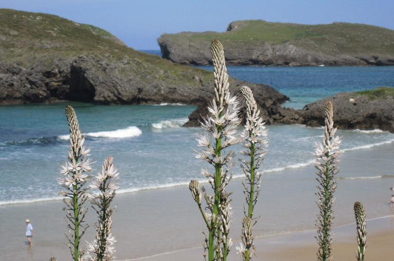 Playa de Barro-Llanes